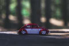 Beetle, Car, Macro stock images
