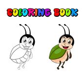 Beetle cartoon coloring book isolated on white background.  Royalty Free Stock Photos
