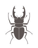 Beetle deer. Hercules beetle. Vector Illustration. illustration EPS Stock Photo
