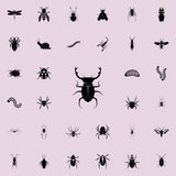 beetle deer icon. insect icons universal set for web and mobile stock illustration