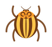 Beetle flat insect bug in cartoon style vector illustration Stock Photo