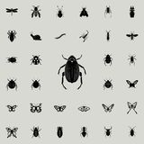 beetle goliath icon. insect icons universal set for web and mobile royalty free illustration