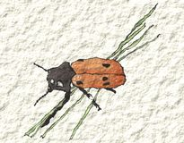 A beetle on grass in watercolor Royalty Free Stock Photos