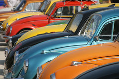 Beetle hoods Royalty Free Stock Photos