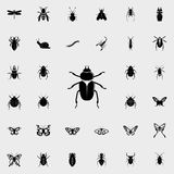 beetle icon. insect icons universal set for web and mobile royalty free illustration