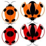 Beetle illustration Stock Photo