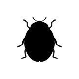 Beetle insect black silhouette animal. Vector Illustrator.rr royalty free illustration