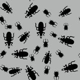 Beetle insect seamless pattern 662 Royalty Free Stock Photos