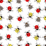 Beetle ladybug seamless pattern, insects vector background. Red and yellow speckled bugs  striped  on a white . For fabric design, Royalty Free Stock Photos