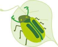 Beetle On Leaf Stock Images