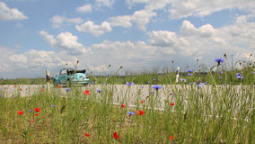 Beetle oldtimer on the way, country road with flowers Stock Images