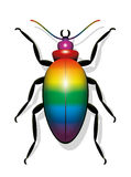 Beetle Rainbow Colored Royalty Free Stock Images