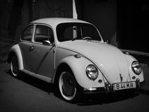 Beetle retro car Stock Images