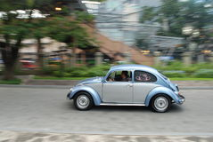Beetle ride Royalty Free Stock Image