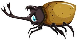 Beetle with sharp horn. Illustration stock illustration