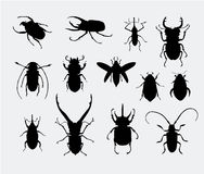 Beetle Silhouettes Royalty Free Stock Photos