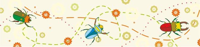 Beetle Stripe Stock Image