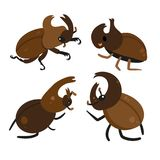 Beetle vector collection design royalty free illustration