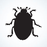 Beetle. Vector drawing. Large cute melolonthinae on white backdrop. Dark ink color hand drawn picture logo in art retro print style. View closeup with space for Stock Photos