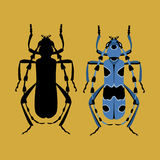 Beetle vector illustration style Flat black silhouette Royalty Free Stock Photo
