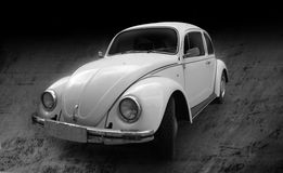 Beetle vintage car Stock Image