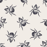 Beetle vintage seamless pattern Royalty Free Stock Images