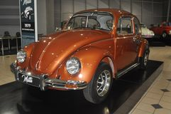The Beetle royalty free stock images