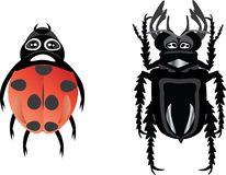 Beetles Royalty Free Stock Photos