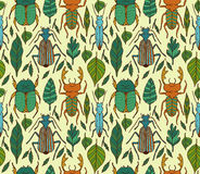 Beetles  pattern. Seamless pattern with different beetles and leavs Stock Image