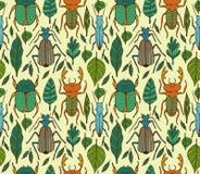 Beetles  pattern Stock Image