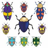 Beetles. Set of vector illustrations. For design and decoration of fabric, home textiles and surfaces Stock Image