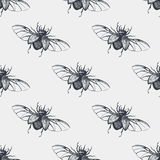 Beetles with wings vintage seamless pattern Stock Photos
