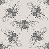 Beetles with wings vintage seamless pattern Stock Photography