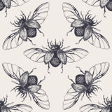 Beetles with wings vintage seamless pattern Royalty Free Stock Photo