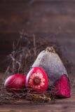 Beetrood easter ägg Fotografering för Bildbyråer