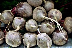 Beetroot. This picture is a representation of beetroot on a farm bench Stock Photo