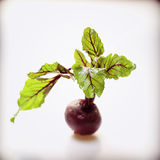 Beetroot. With leafs on a white background Stock Photo