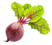 Beetroot. Fresh beetroot with leaves isolated on white stock photo