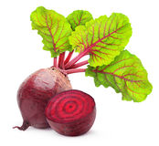 Beetroot obrazy royalty free