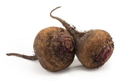 Beetroot, beet Royalty Free Stock Photo