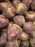 Beetroot, beet, background stock photo