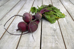Beetroot bunch on white wood Stock Photos