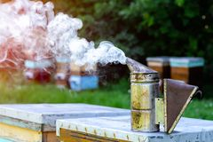 Beetroot chimney. Beehives on the outskirts of the forest. Concept of beekeeping. Stock Images
