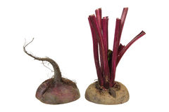 Beetroot cut in Half Royalty Free Stock Photo