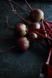 Beetroot on a dark background Stock Photos