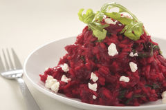 Beetroot and goat's cheese risotto. Beetroot, rocket and goat's cheese risotto, with rocket garnish Stock Photography