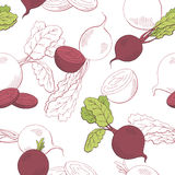Beetroot graphic vegetable color seamless pattern sketch illustration Royalty Free Stock Images