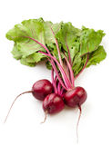 Beetroot group Royalty Free Stock Images