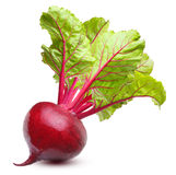 Beetroot  isolated Royalty Free Stock Images