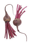 Beetroot Stock Image